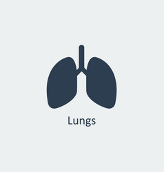 lungs icon vector image