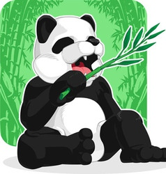 Panda Eating Bamboo Leaves vector image