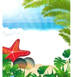 Tropical beach with cockleshells and starfishes vector image