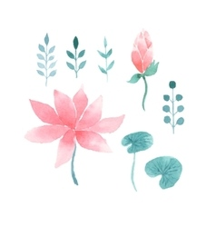 Watercolor floral set with lotus flowers vector image