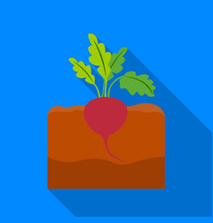 beet icon flat single plant icon from the big vector image