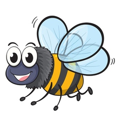 a bee vector image vector image