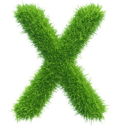 Capital letter x from grass on white vector