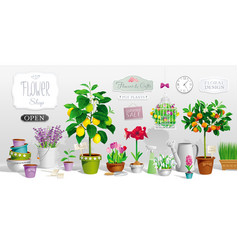 Collection of pot plants vector