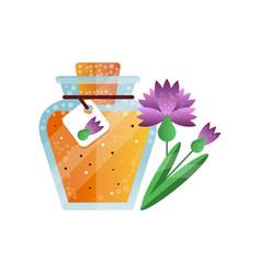 Glass jar of honey and carnation flower natural vector