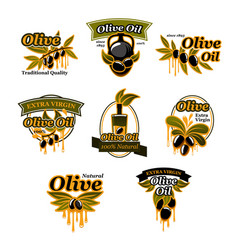 Icon of olives for organic olive oil vector