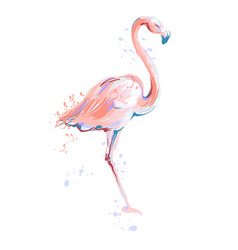pink flamingo sketch on white vector image