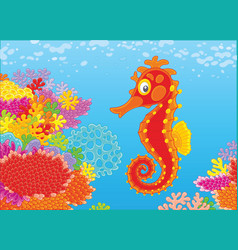 seahorse and corals vector image vector image