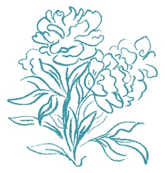 Beautiful peony bouquet vector image vector image