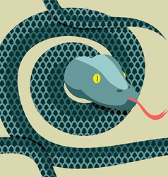Snake seamless pattern Longest reptile Python vector image vector image