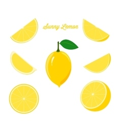 Bright Set of Fresh Lemon and Juicy Lemon Slices vector image vector image