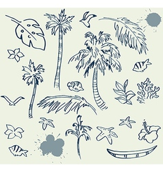Collection of Beach Doodles vector image