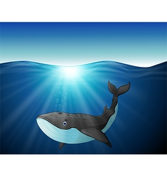 Cute whale cartoon on the sea vector image