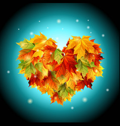 heart from autumn leaves web design vector image