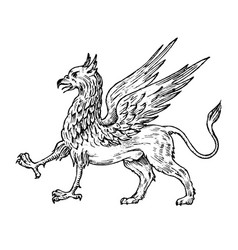 Mythological animals mythical antique griffin vector