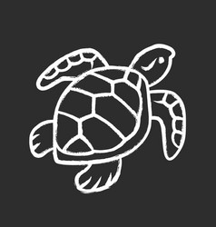 turtle chalk icon slow moving reptile with scaly vector image