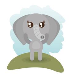 Cute elephant animal wildlife vector