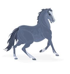 Black-horse vector