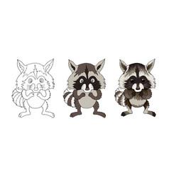 Raccoon funny animal cartoon character isolated vector