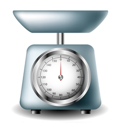 Kitchen scale vector image vector image