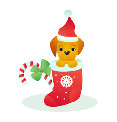 christmas dog pet animal puppy in santa hat vector image