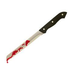 kitchen knife with blood vector image