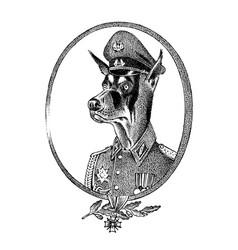 Military dog or dobermann animal character vector