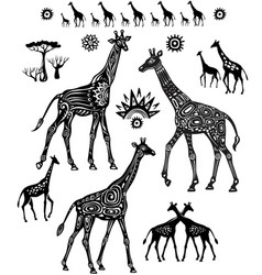 set decorated stylized giraffes in ethnic style vector image