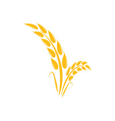 Wheat agriculture graphic design template vector