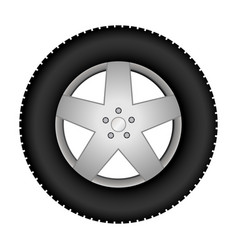 car tire on an alloy wheel vector image