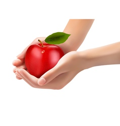 Red ripe apple in a hands Concept of diet vector image vector image