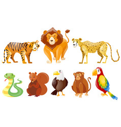 set of different wild animals vector image