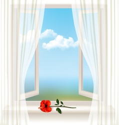 Background with an open window and a red flower vector image vector image