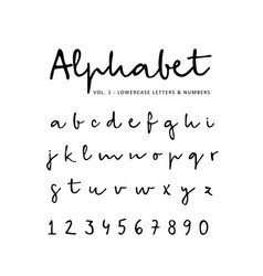 Hand drawn alphabet font isolated lower vector