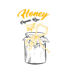 honey sketch glass jar with canned food isolated vector image