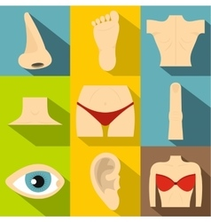Human body icons set flat style vector