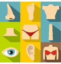 Human body icons set flat style vector image