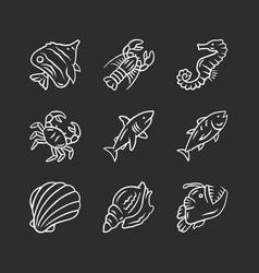 Marine animals chalk icons set swimming shark vector