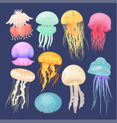 Ocean jellyfish bright set on dark blue vector