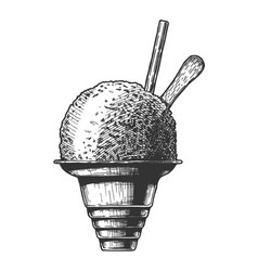 Shave ice vector
