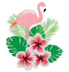 flamingos flower vector image vector image