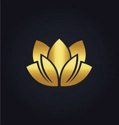 lotus flower beauty spa gold logo vector image