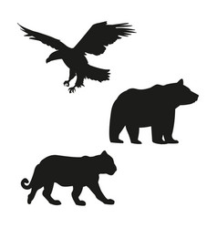 eagle bear and tiger black silhouette vector image