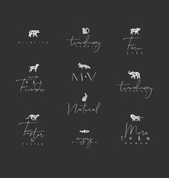 animals mini floral graphic signs black vector image