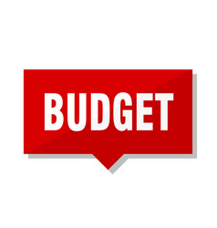 Budget red tag vector