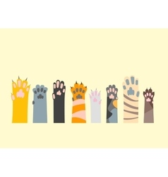 Cartoon Different Cat Paw Set vector