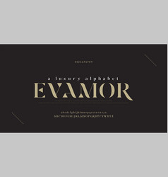 Elegant luxury alphabet letters font and number vector
