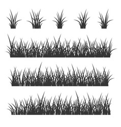 Grass set on white background vector