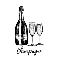 hand sketched champagne bottle and two glasses vector image