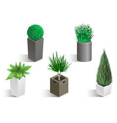 Isometric set of different plants vector